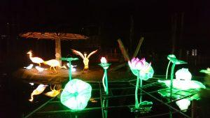 plantsoen van China Lights