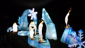 pinquins van China Lights