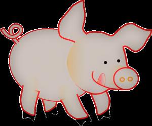Feng Shui - het chinese jaar van het varken